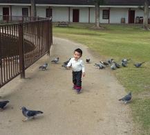 Feeding (and harassing) the birds at Los Encinos