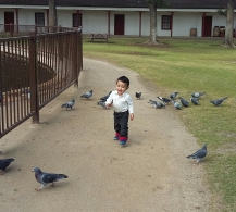 Feeding (and harassing) the birds at Los Encinos